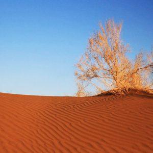 Varzaneh-Desert.2