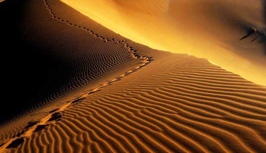 Maranjab Desert - Kashan
