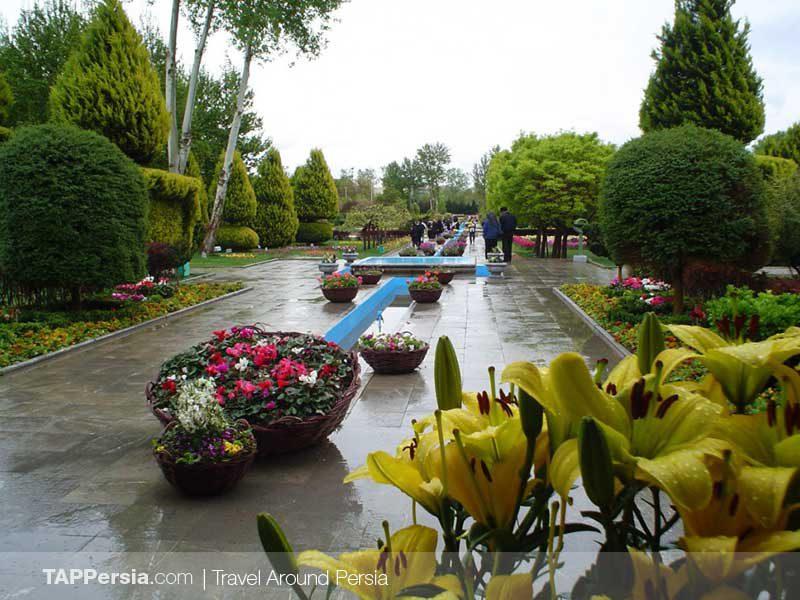 Flowers Garden - Isfahan - TAP Persia