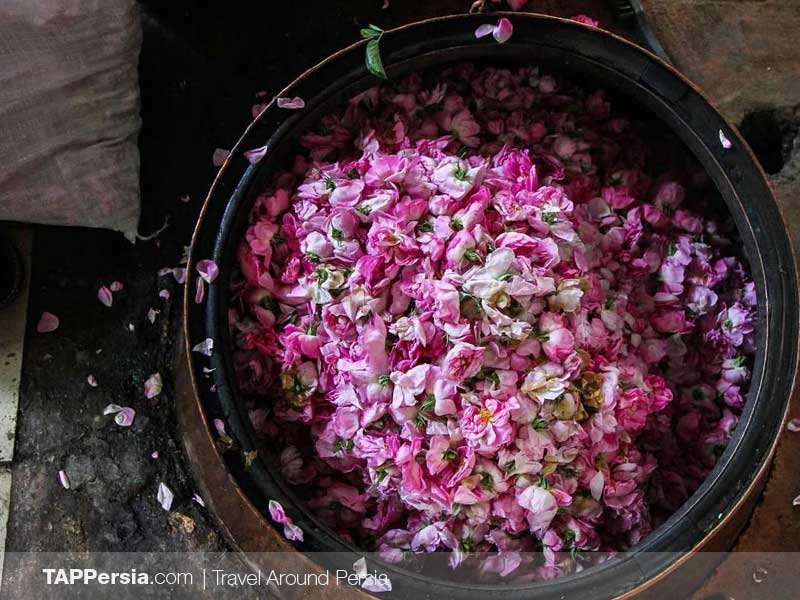 Rose Water - Kashan