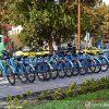 Isfahan Bicycle Tour- Iran Budget Tour | TAP Persia