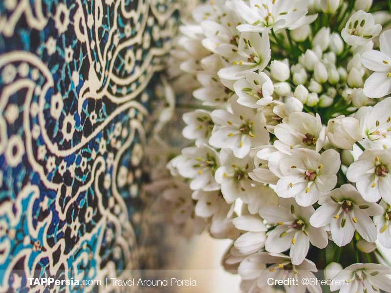 Iran Flowers Culture - TAP Persia