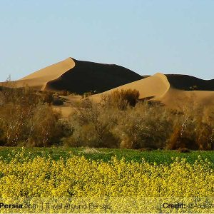 Nature and Wildlife Tour-Ashtyan-TAP Persia