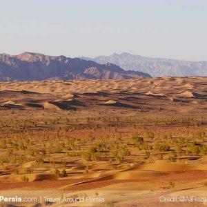 Nature and Wildlife Tour-Chupanan Sand Dunes-TAP Persia