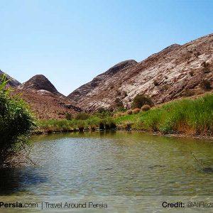 Nature and Wildlife Tour-Kabudan-TAP Persia