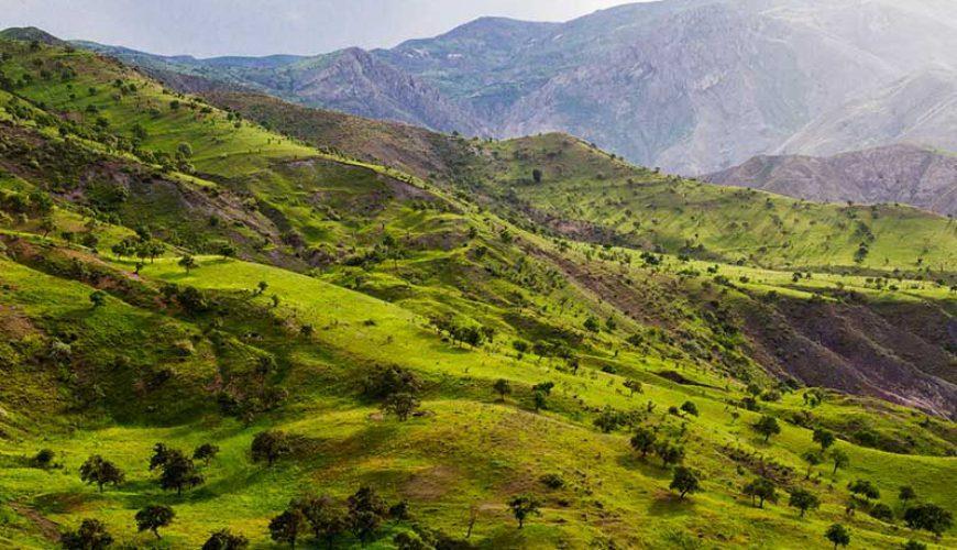 Alamut Region - Qazvin Nature - TAP Persia