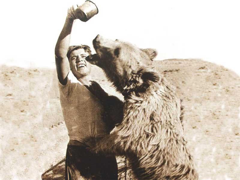 Wojtek the Bear-TAP Persia