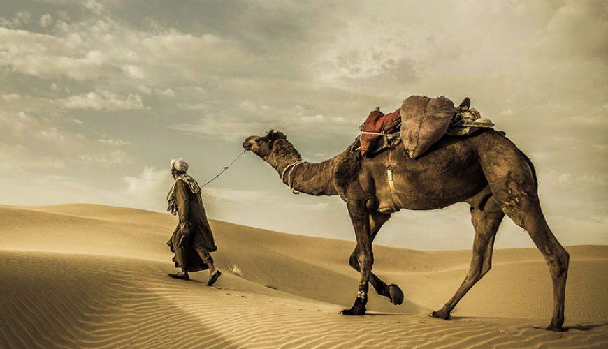 The Silk Road - Travel to Iran - TAP Persia