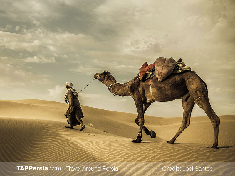 The Silk Road - Travel to Iran - TAP Persia