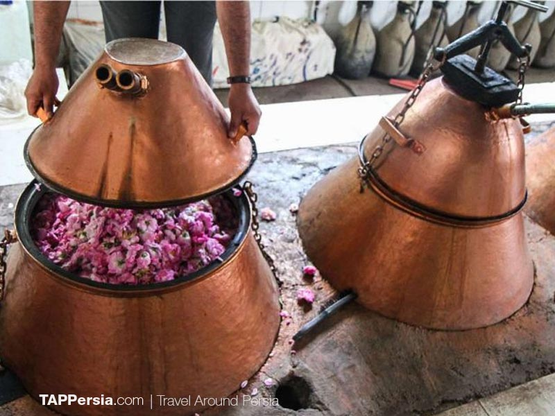"Kashan Is Famous For ""Gulab"" – The Best Quality Rosewater in Kashan"