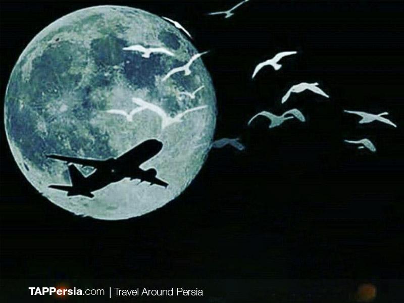 Ukraine Flight Crash