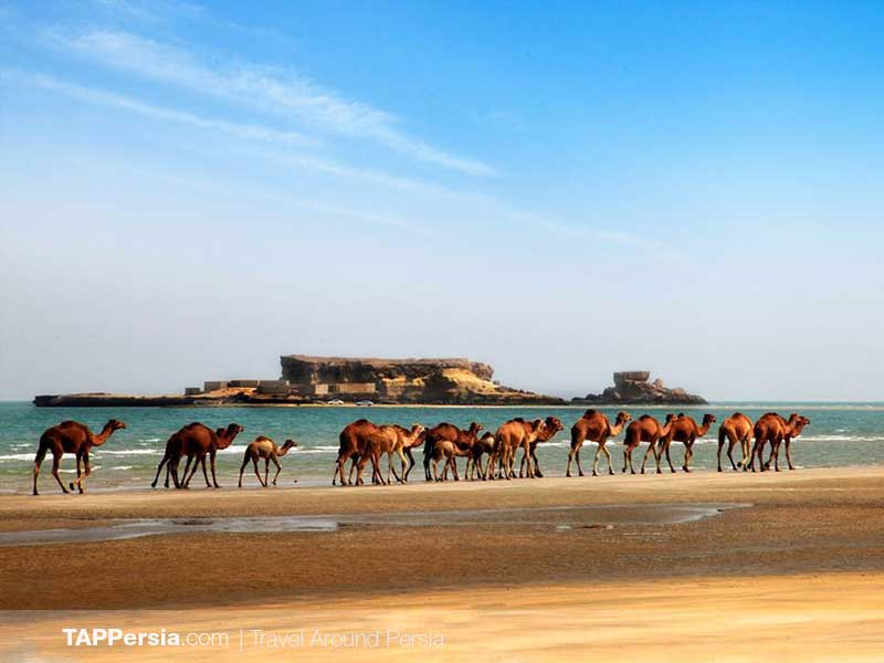 21 Qeshm Island - 10 top natural attractions in IRAN