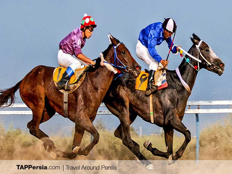 Iranian Turkmen - Turkmen horseracing