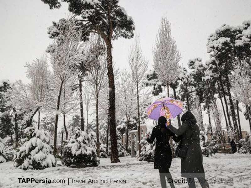 Snowfal in Iran