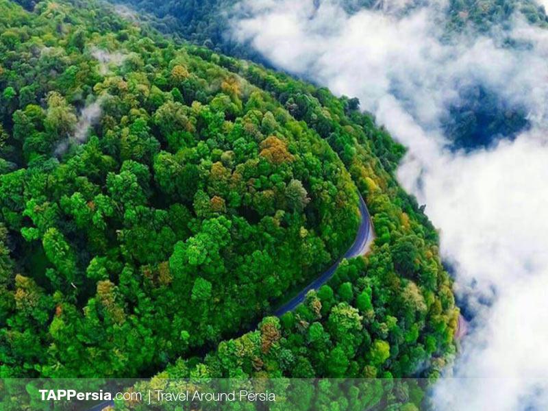 Gilan Forests - Iran