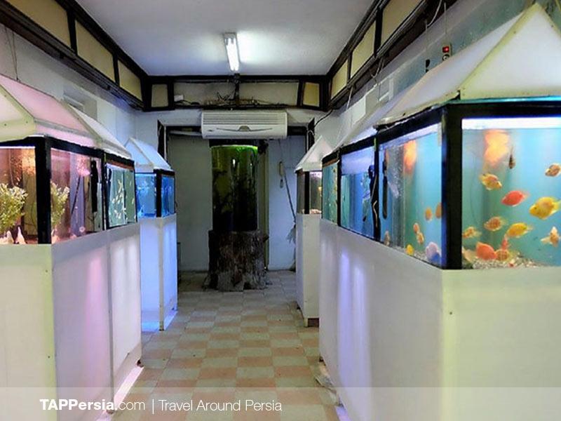 Tehran Aquarium - Iran